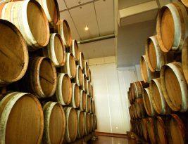 Oregon Pinot Noir Producers leading the next generation