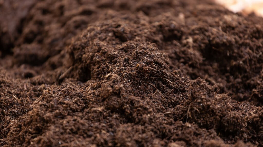Clean potting soil for cultivation.
